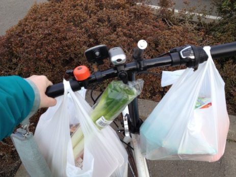 Getting the Groceries Home on a Bicycle